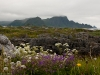 20110630_nordnorge_27