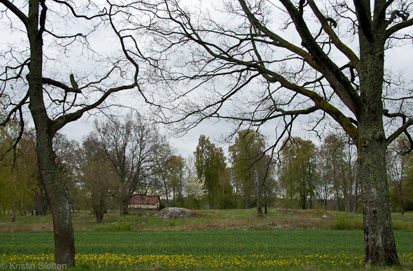 20120511_parring_07