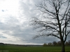 20120511_parring_06